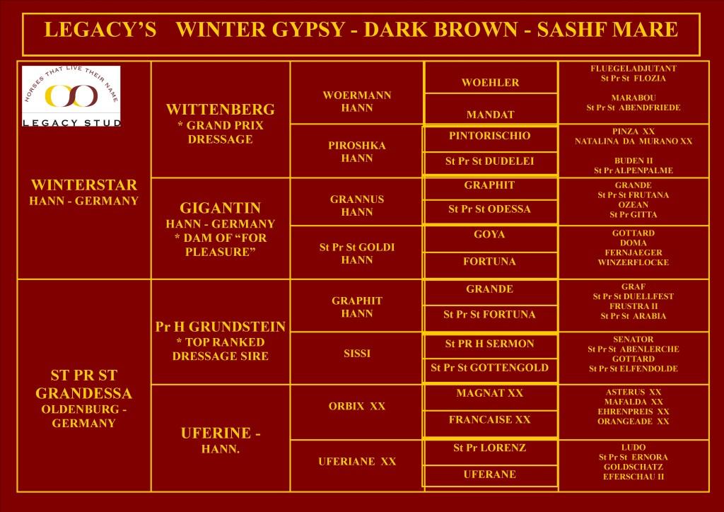Legacy's Winter Gypsy